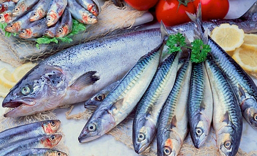 Resultado de imagen de pescado azul