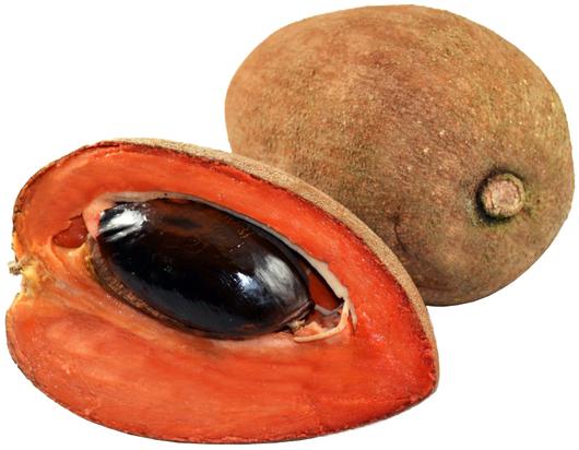 Pregon Agropecuario :: Zapote: 11 curiosas propiedades de esta fruta que  benefician tu salud - Complejo agroalimentario - Alimentos saludables